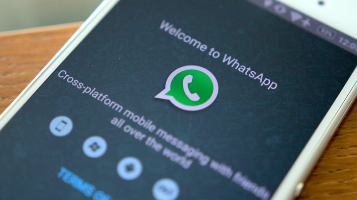 androidpit-whatsapp-hero-16-w782
